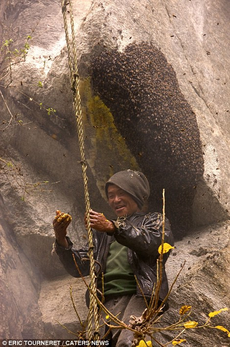 喜马拉雅山区峭壁上的尼泊尔采蜜人