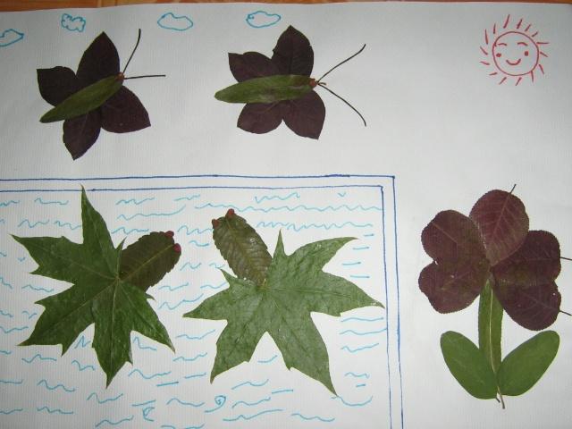 我挑了一些漂亮的树叶带回家,把树叶一片一片放在字典里做成标本.