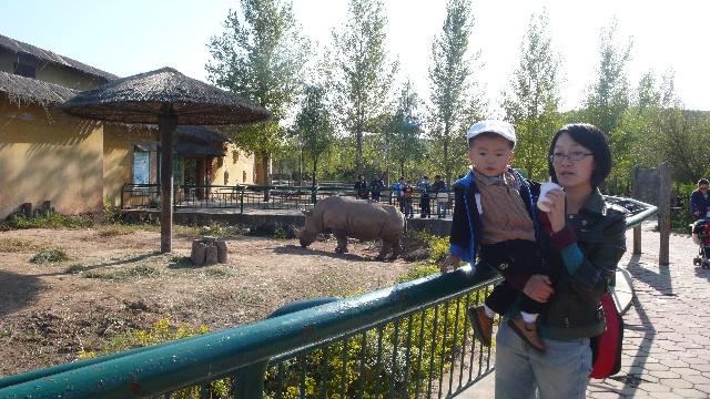 宝宝游沈阳森林野生动物园