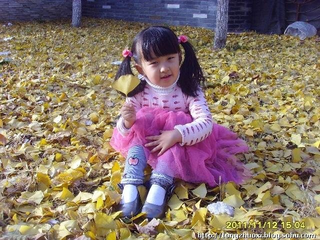 捡落叶的小女孩儿-娇嫩的花蕊-搜狐博客