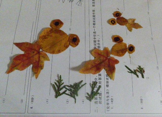 用树叶做粘贴画 亲子树叶粘贴画 利用花和树叶做粘贴画