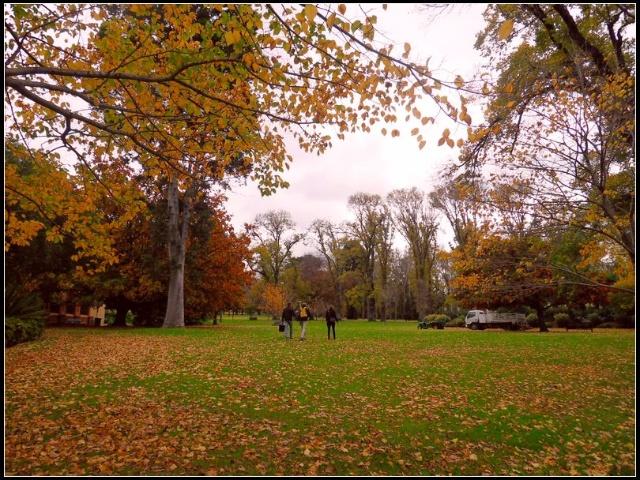 澳大利亚:费兹洛花园