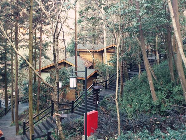大森林背景壁画