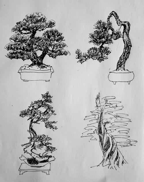 【网络书画协会】盆景(植物--竖式) - 网络书画