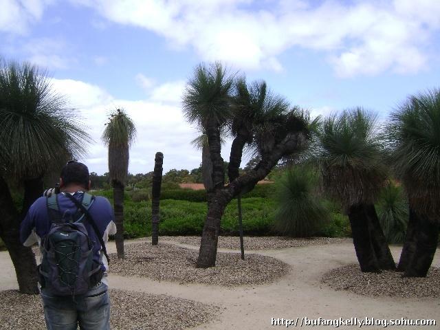 沙ifs屋顶雕塑花园